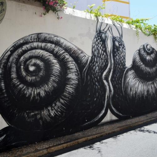 streetart lagos snail