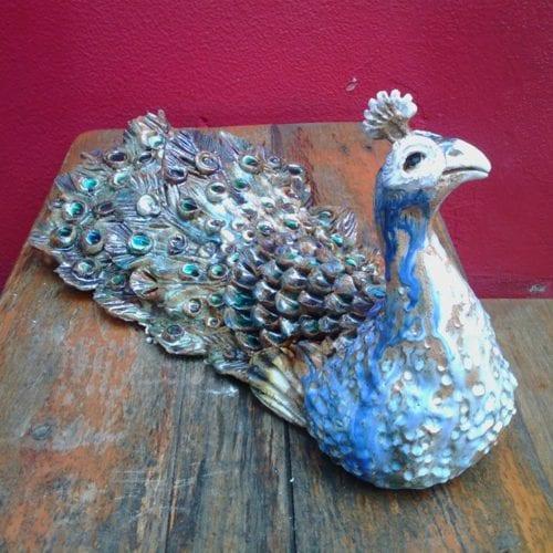 studiobongard peacock