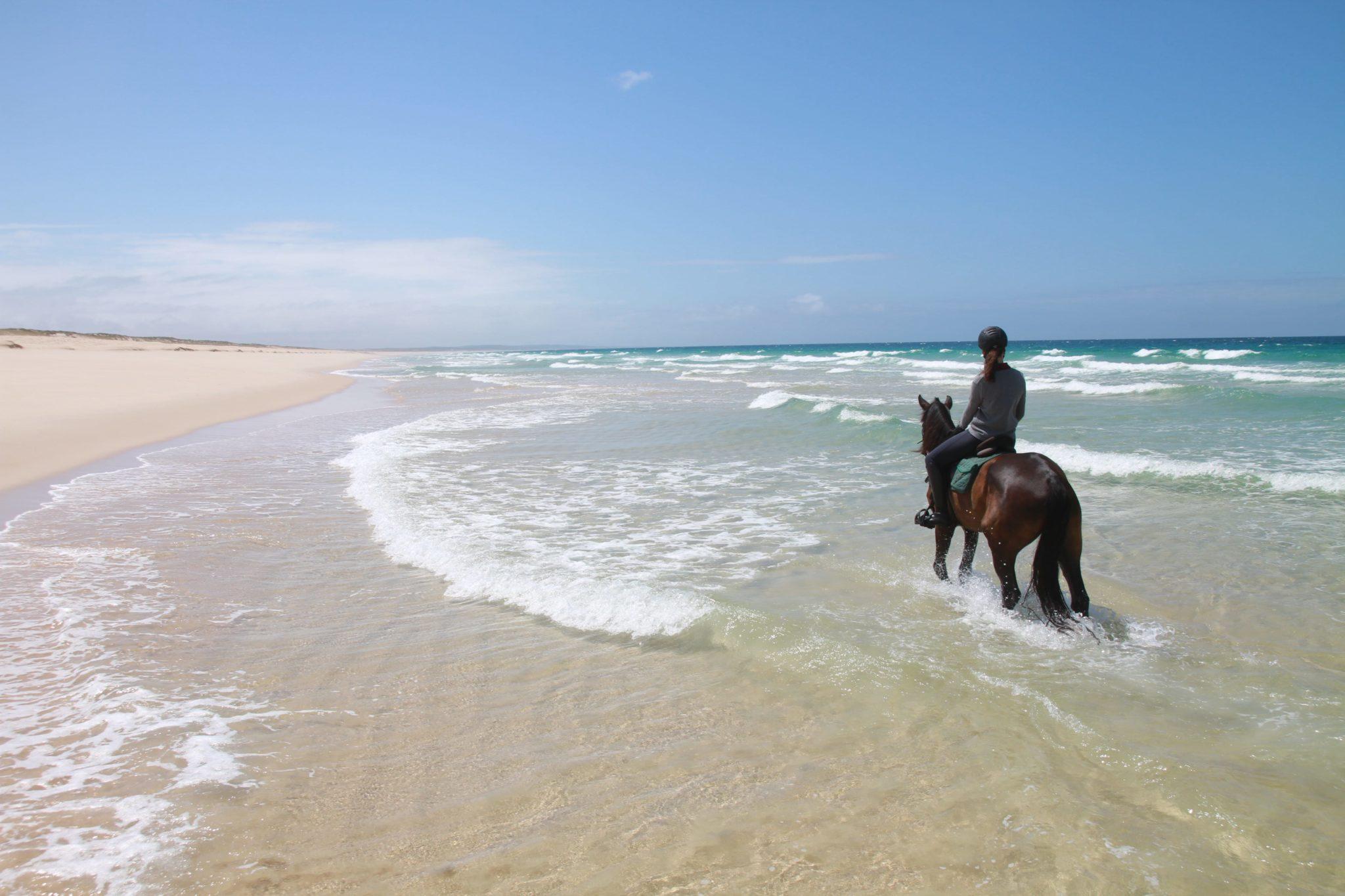 melides horseriding
