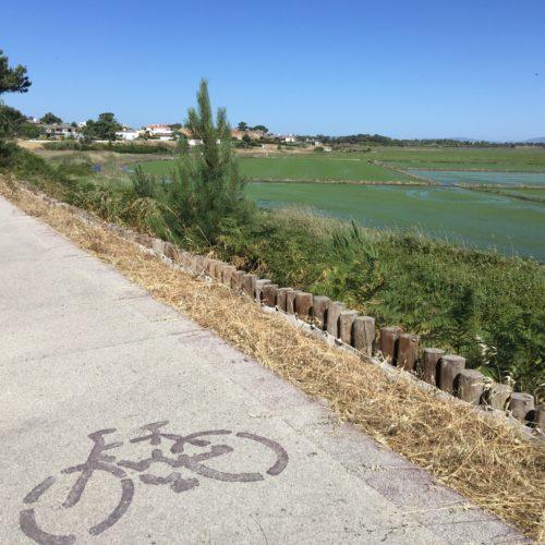comporta bikes