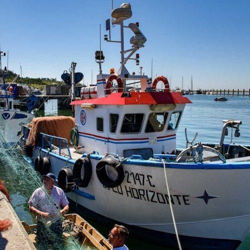 conservas fishingboat